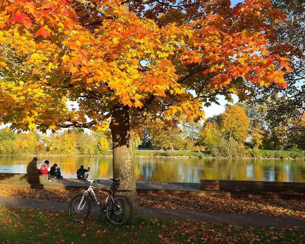 Cyklotrasy Veľký Meder jeseň